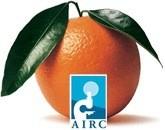 Arance per la ricerca, l'AIRC ė in piazza a Ellera