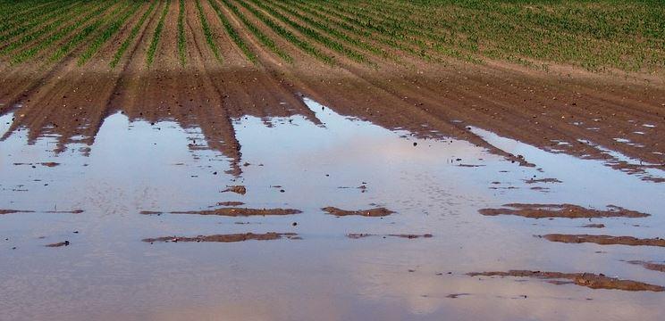 Contributi per danni alluvione 2012: a Corciano due domande presentate in ritardo, una ammessa