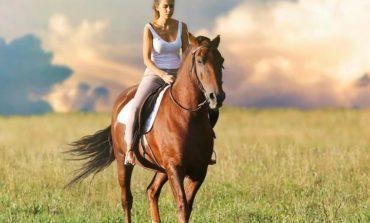 Alla scuderia dell'Unicorno corsi per Assistenti di Equitazione Integrata EQUITABILE®
