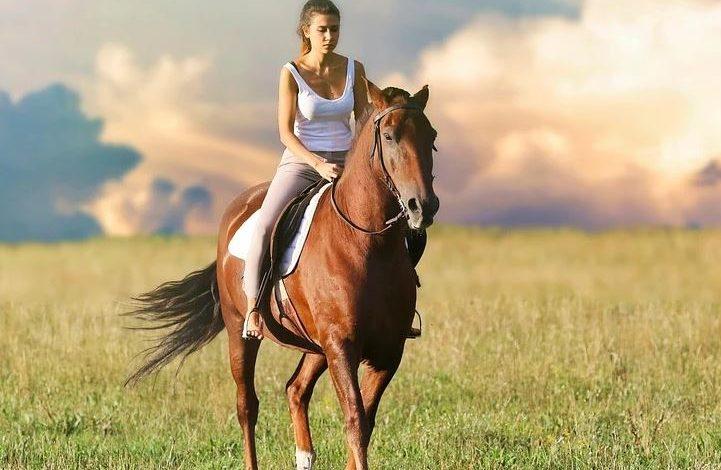 catia brozzi cavalli disabilità disagio emarginazione equitabile equitazione Equitazione Integrata figura professionale ippica recupero scuderia dell'unicorno sociale corciano-centro