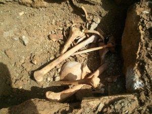 Ritrovata una tomba romana a Capocavallo, ecco le foto 5