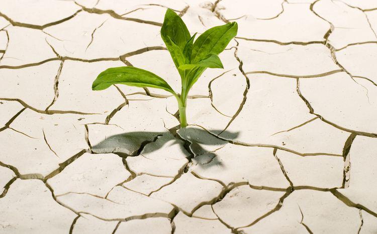 La sfida per il nuovo Rinascimento economico, maxi-evento domani a Corciano