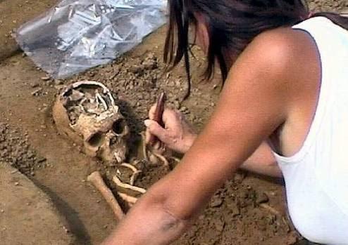 archeologi elenco professionisti lavori pubblici glocal