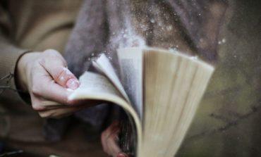 Libri abbandonati nel magazzino comunale, l'assessore Pierotti lancia la vendita di beneficenza