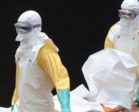 Virus Ebola: l'allarme, il contagio e i farmaci sperimentali