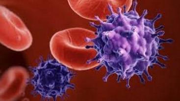 Aids: Federfarma, 48 casi Hiv in Umbria nel 2014