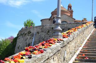Festa del Tulipano Corciano vince la sfida dei carri allegorici