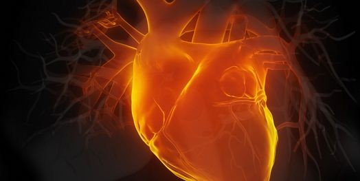 In ricordo dello scienziato corcianese Dario Maestrini, un convegno sullo scompenso cardiaco