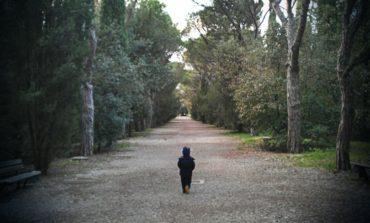 """I cittadini chiedono l'Area Boscata nel PRG del Colle della Trinità: """"Ma il Comune non ci ascolta"""""""