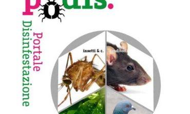 Insetti, topi infestazioni: nasce PODIS il portale per aiutare i cittadini