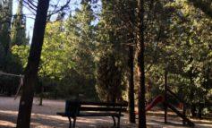 """Trinità, intervengono le associazioni: """"Il parco non è esente da criminalità, i soldi pubblici potevano essere spesi meglio"""""""