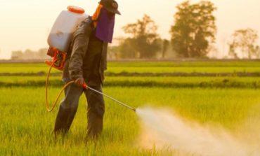 Pesticidi e glifosato: il Movimento 5 Stelle chiede l'adeguamento del regolamento comunale