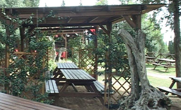 Parco della Trinità: il pensiero di un cittadino frequentatore