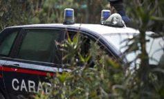 Mamma pusher esce di casa con il figlio e 3,8 kg di coca in borsa. Arrestata