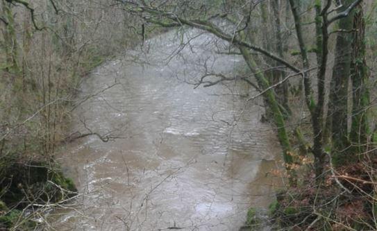 emergenza esondazione fiume processo cronaca mantignana