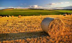 Il PD organizza un incontro pubblico per parlare dei fondi per l'agricoltura 2014-2020