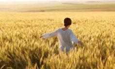 """Agricoltura al femminile, Coldiretti: """"In Umbria 11 mila imprese guidate da donne"""""""