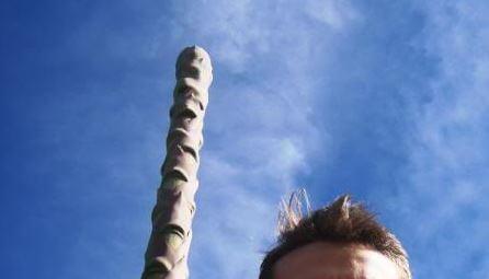 Trovato nei boschi di Corciano l'asparago più grande del mondo: già si parla del museo dell'asparago