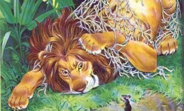 """Alla Biblioteca Rodari continuano le letture ad alta voce con """"Il Leone e il Topolino"""""""