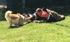 Primo soccorso, i ragazzi di Marsciano a lezione di cinofila con OVUS Corciano