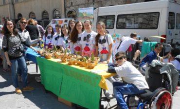 """""""Diversamente Creativi"""": anche gli studenti della Bonfigli in piazza"""