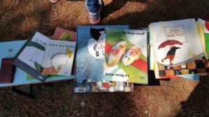 Da Ellera a Ferro di Cavallo l'anno scolastico si conclude con una maratona... di lettura 1