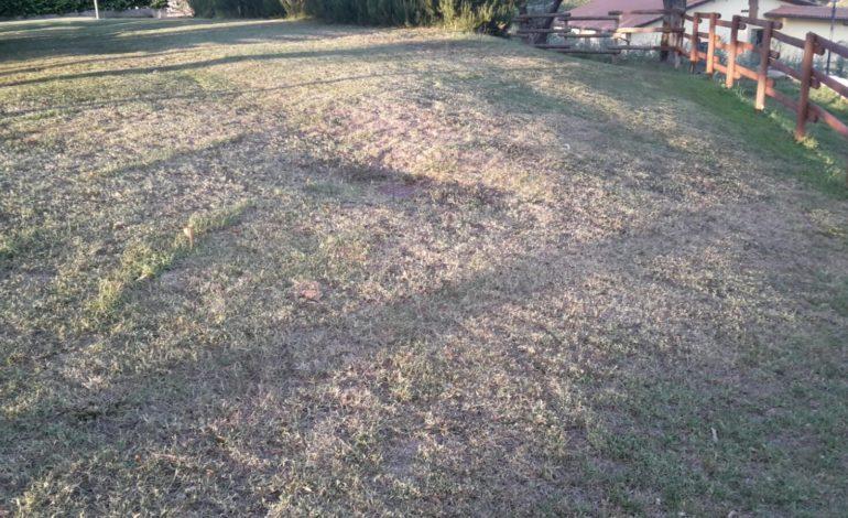 San Mariano, i giardini del Castello in pessime condizioni: l'impianto di irrigazione non funziona