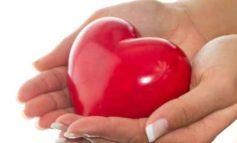 """Donazione organi e tessuti: i risultati a Corciano del progetto """"Una scelta in Comune"""""""