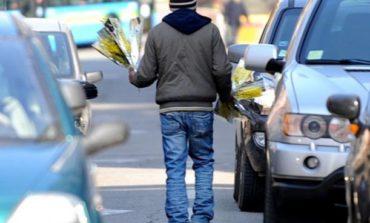 Federfiori attacca: l'8 marzo nessun controllo, mimose spacciate abusivamente ovunque
