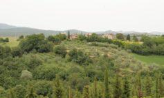 """Turismo, da Cucinelli, Bocci e Spagnoli: """"Venite in vacanza in Umbria"""". L'appello dei vip per la campagna della Regione"""