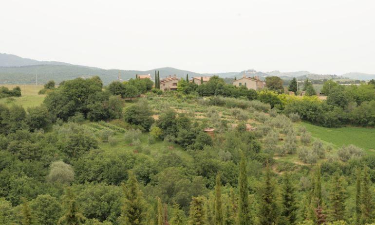 campagna cucinelli cuore verde economia italia klaus davi marco bocci perugia spagnoli testimonial turismo vip economia glocal
