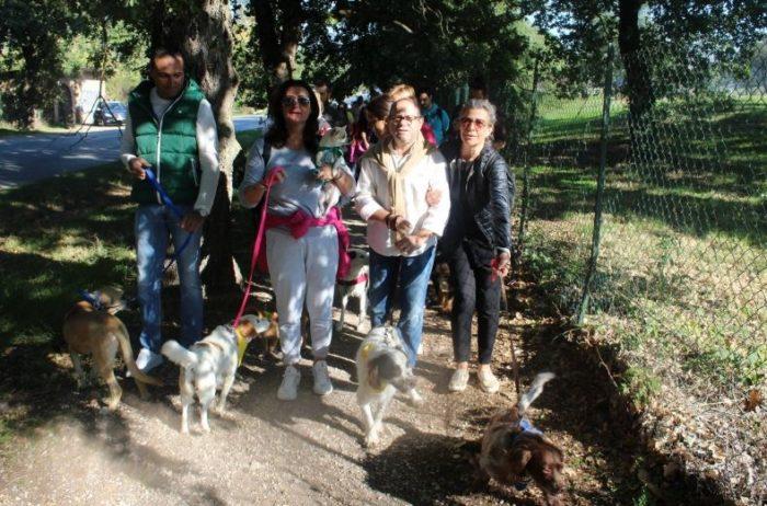animali passeggiata pets eventiecultura san-mariano