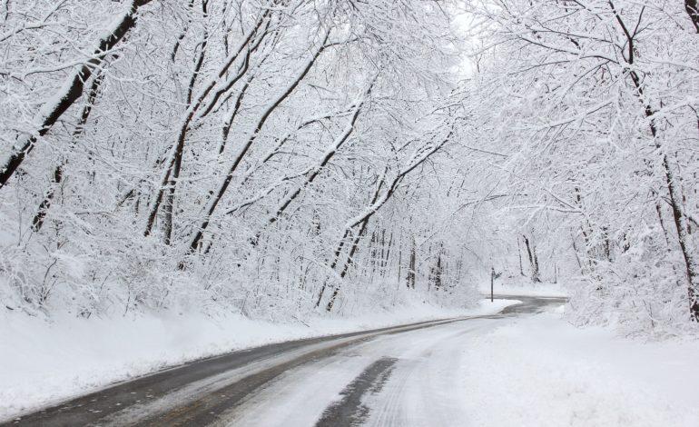 emergenza neve piano neve protezione civile viabilità cronaca glocal