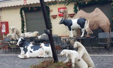 Bravata natalizia nel borgo: spostate le grandi statue del Presepe