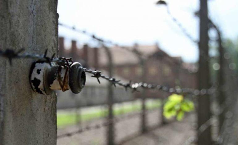 Auschwitz giorno della memoria shoah opinioni