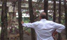 Vivere a pochi passi dal cavalcavia: lo strano caso della famiglia Sanna