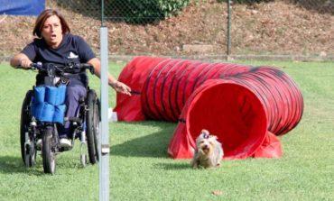Pet's in Love: anche con gli animali si possono abbattere le barriere alla disabilità