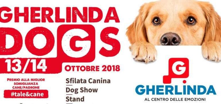 Un weekend da… cani al Gherlinda Dogs: sarà premiata la somiglianza cane padrone