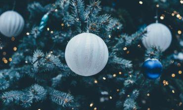 Natale, Coldiretti: alberi veri in una casa su tre
