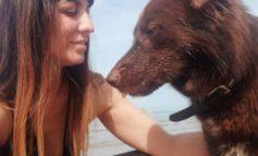 Francesca Paxia, l'angelo dei cani maltrattati o in difficoltà