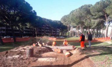 """Il """"Parco delle Fate"""" verso il completamento, intervento da 40mila euro"""