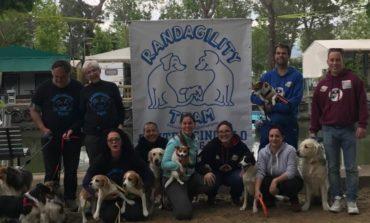 Agility Dog: nasce un nuovo centro cinofilo a Castelvieto