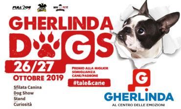Torna 'Gherlinda dogs', la manifestazione dedicata ai cani e ai loro padroni