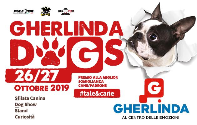 concorso dogs gherlinda iscrizioni eventiecultura