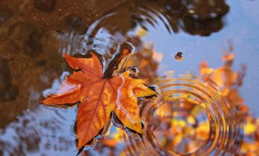 Arriva l'autunno, da mercoledì piogge e calo temperature