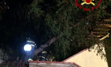 Albero cade su abitazione a Corciano
