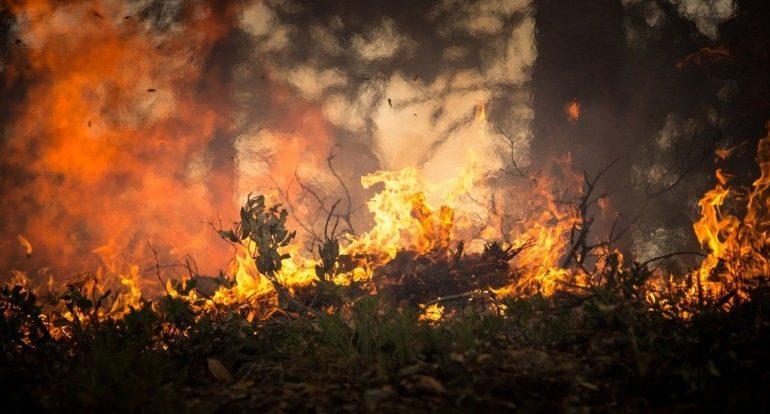 antincendio Corciano idrovora protezione civile cronaca