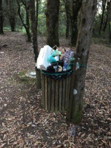 ambiente assessore carlotta caponi ricicleria rifiuti tsa cronaca