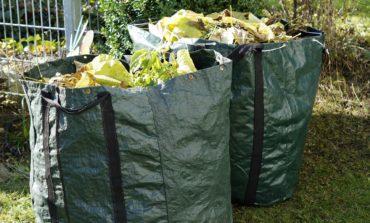 Via libera al conferimento di sfalci e potature alla ricicleria di Mantignana