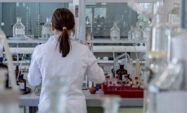 Coronavirus, al via in Umbria la campagna di test sierologici per il personale scolastico